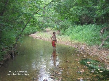 Creek2010-lr