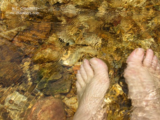 feetL_1360-lr